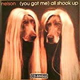 You Got Me All Shook Up / After the Rain by Nelson (1995-05-16)