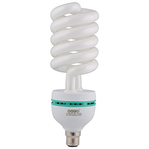55 Watt Spiral CFL Bulb