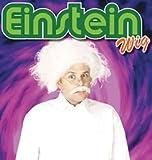 NEW WHITE PROFESSOR EINSTEIN WIG MAD SCIENTIST