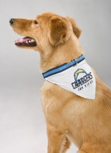 San Diego Chargers Collar with Bandana NFL Dog Pet (Large)