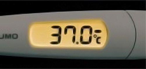 テルモ 電子体温計 【スピード検温式 平均20秒】 テルモ