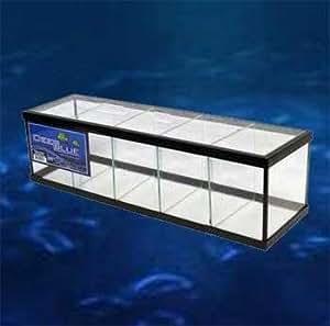5 way betta tank black 18x5x7 w glass canopy for Fish tank divider 5 gallon
