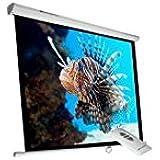 Phoenix Technologies PHPANTALLA-ELEC200 pantalla de proyección - Pantalla para proyector (1