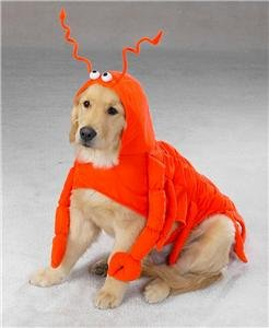 Pet Costume Lobster Paws Medium