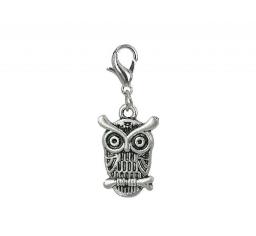 Edelstahl Charm Eule von Charming Charms