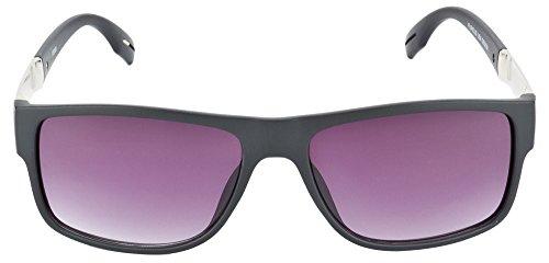 Matte Aten Wayfarer Sunglasses (Matte Black) (FS104) (Multicolor)