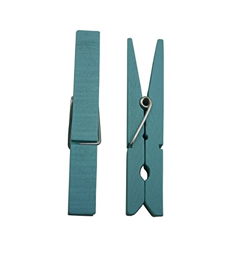 "Generic Wood Craft Clothespins with Spring 2.9"" Color Light Blue Pack of 30"