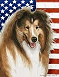 Collie by Tamara Burnett Patriotic II House Dog Breed Flag 28'' x 40''