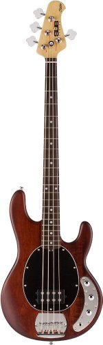 Sterling by Music Man S.U.B. SERIES Ray4 Walnut