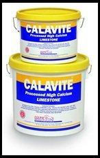 4 Functions Of Calcium