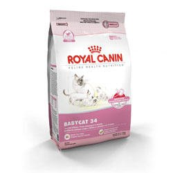 Image of Royal Canin Feline Health Nutrition Babycat 34 Dry Kitten Food