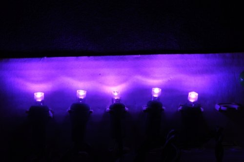 Purple 12-Volt Wide Angle Led Light String