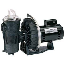 Pentair DYNII-NI-2 HP Dynamo Single Speed Aboveground Pool Pump with Cord, 2 HP