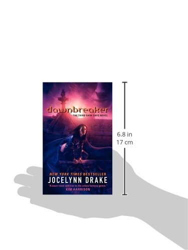 Dawnbreaker: The Third Dark Days Novel (Dark Days Series)