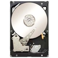 Seagate Constellation ES 2 TB 7200RPM 6 Gb/s SAS 64MB Cache 3.5 Inch Internal Bare Drive (ST2000NM0001)