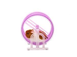 Funtime Gifts Wheel Runner Hamster