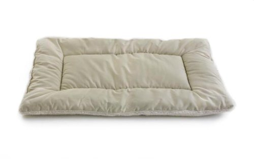 Sleep On A Cot front-101436
