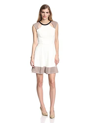 A.B.S. by Allen Schwartz Women's Colorblock Fit-and-Flare Dress