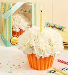 Flowers by 1800Flowers - Cupcake in Bloom