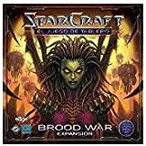 Starcraft: Brood War Expansion