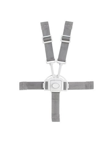 New Boon Flair Harness/Buckle