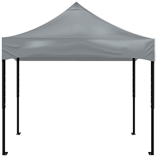 Kd Kanopy Psk100S Party Shade Steel Frame Indoor/Outdoor Portable Canopy, 5 By 5-Feet, Silver