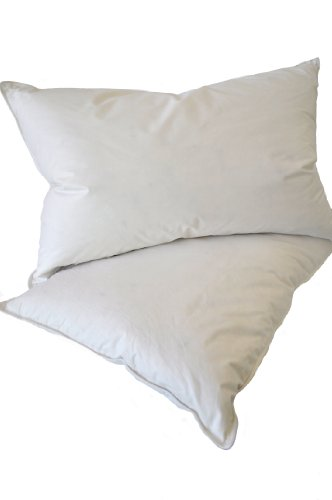 Natural Comfort Queen Classic White Goose Down Feather