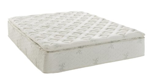 Signature Sleep Signature 13 Inch Mattress, Queen