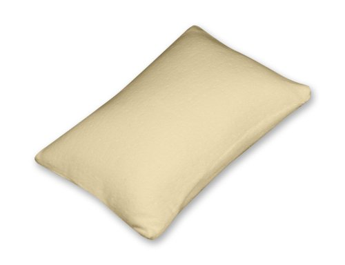 Silver Rest Sleep Shop 14-Inch By 10-Inch Travel Pillow front-156700