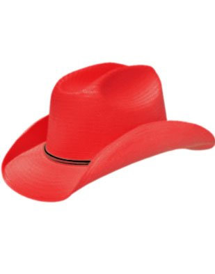 New Country Girls Red Cowboy Stetson Felt Costume Hat