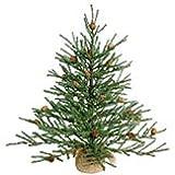 Vickerman B803925 Christmas Tree, 36, Green