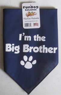 Fun Dog Bandanas I'm The Big Brother Bandana for Dogs, 22 by 22 by 31-Inch