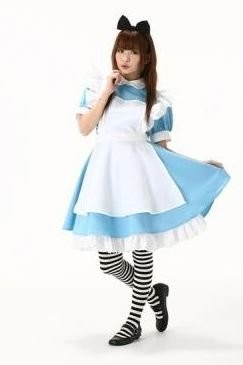 Alice in Wonderland Costume Size L (Japan Import)