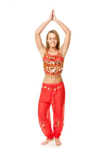 Beaded Top & Harem Pants Belly Dance Costume (Red/gold) M/L