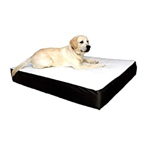 Majestic Pet 24-Inch by 34-Inch Orthopedic Double Pet Bed Medium, Black