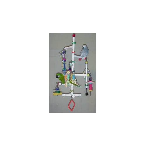 "Amazon.com: Le Trapeze 3/4"" Hanging Gym by Bird Toys, Etc."