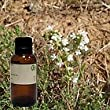 Thyme 100% Pure Essential Oil White - 0.5oz (15ml)