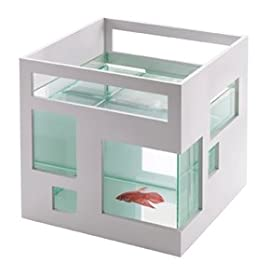 Fish Hotel Fishbowl