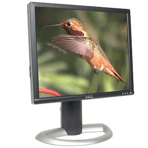 """19"""" Dell 1905Fp Dvi Lcd Monitor (Black/Silver) - Grade B"""