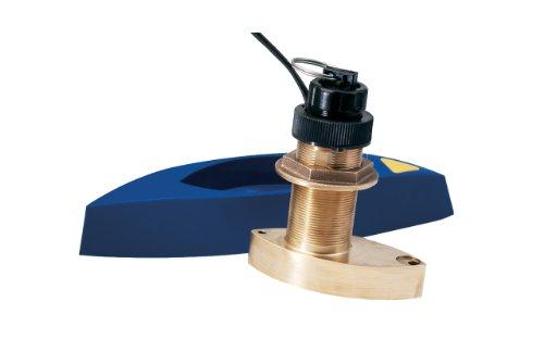 triducer raymarine