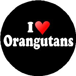 I Love Orangutans Pinback Badge1.25 inches