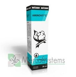 Aminovit L Liquid 30Ml, (Vitamins & Amino Acids) By Avizoon