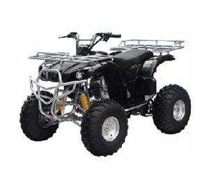 ATA-150D TaoTao Kids Gas 150cc Utility ATV - Black