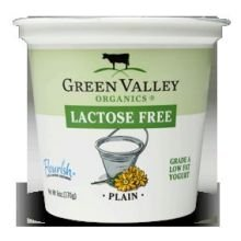 Smoothie Recipes Yogurt
