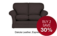 Evie Fixed Small Sofa - Leather