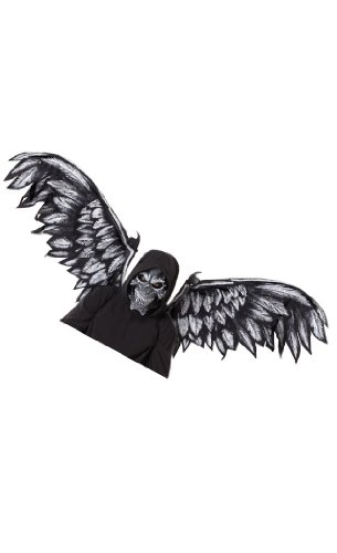 California Costume Collection - Fallen Angel Adult Mask and Wings Kit