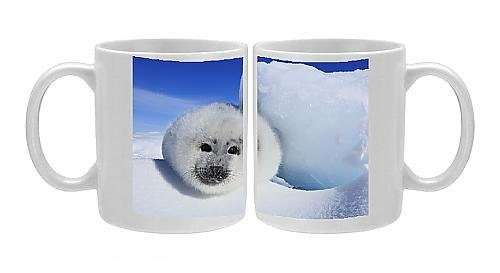 Photo Mug Of Harp Seal - Baby From Ardea Wildlife Pets front-1055469