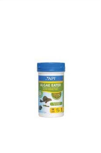 API Algae Eater Alage Wafer, 3.7-Ounce