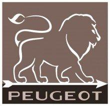 Peugeot Set ALASKA Pfeffermühle + Salzmühle elektrisch quarzgrau/weiß 17 cm