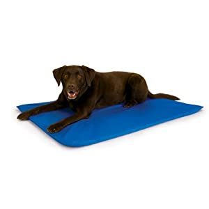 K&H Cool Bed III Cooling Dog Bed, Medium, 22-Inches by 32-Inches, Blue